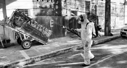FOIA Request Reveals GMO Mosquito Failure in Brazil