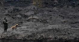 Criminal negligence: 30 days from Brumadinho dam burst