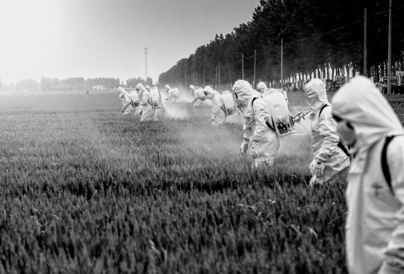 Brazil legalizes 197 pesticides in 2019
