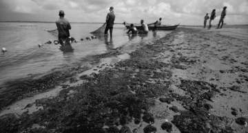 Disaster: Brazilian government can't find oil spill source
