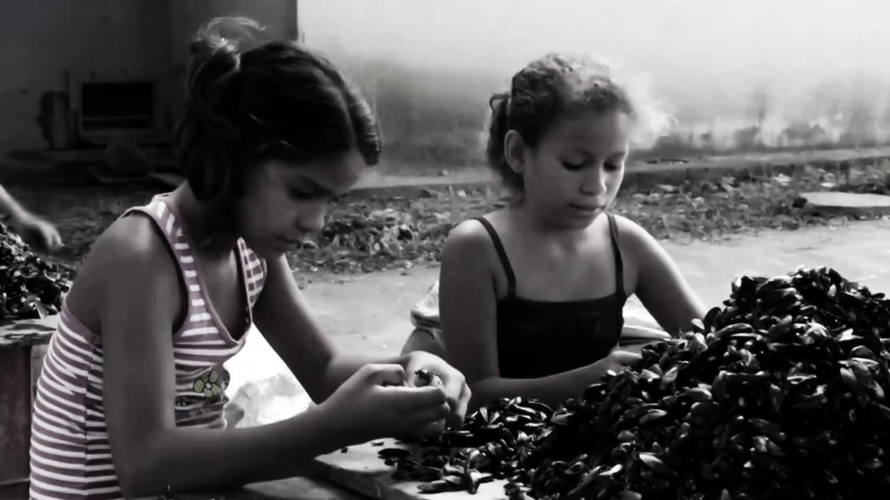 Banana Republic: Bolsonaro defends child labour